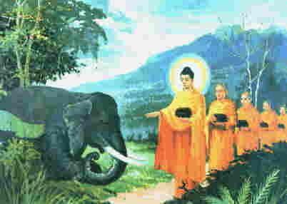 Buddha och elefant