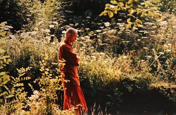 Walking Meditation - Bhikkhu