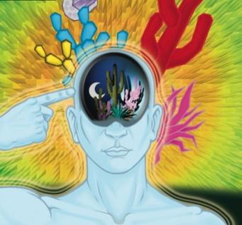 Mind Creations